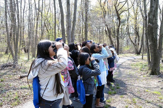 1267 0 Come fare birdwatching coi bambini (II)