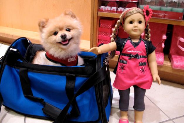 314 0 bambole da collezione_ok