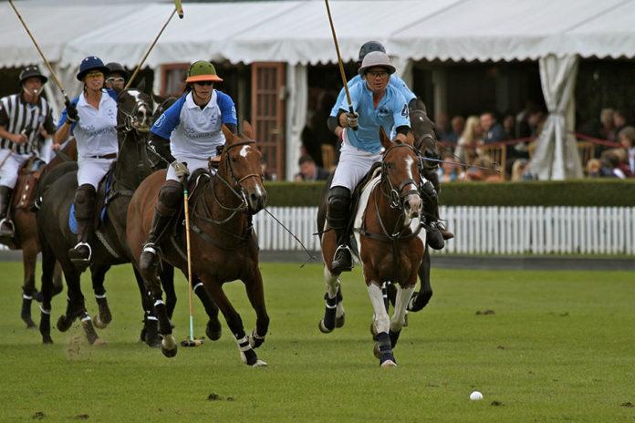535 0 Sport di squadra   Il polo