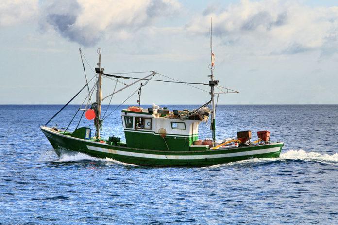639 0 Pesca sportiva   La traina