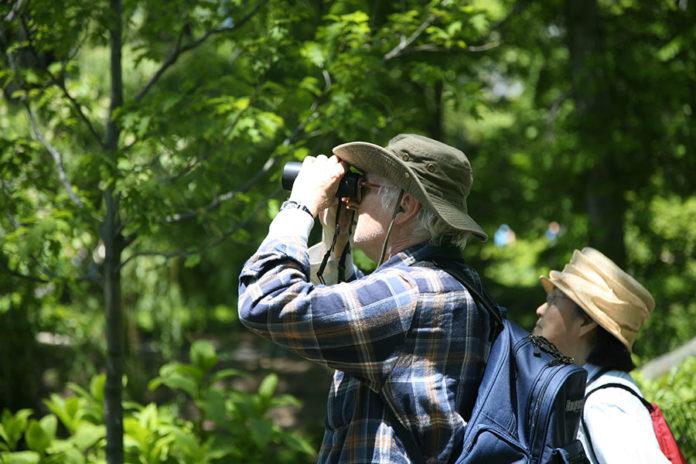 651 0 Outdoor   Il birdwatching